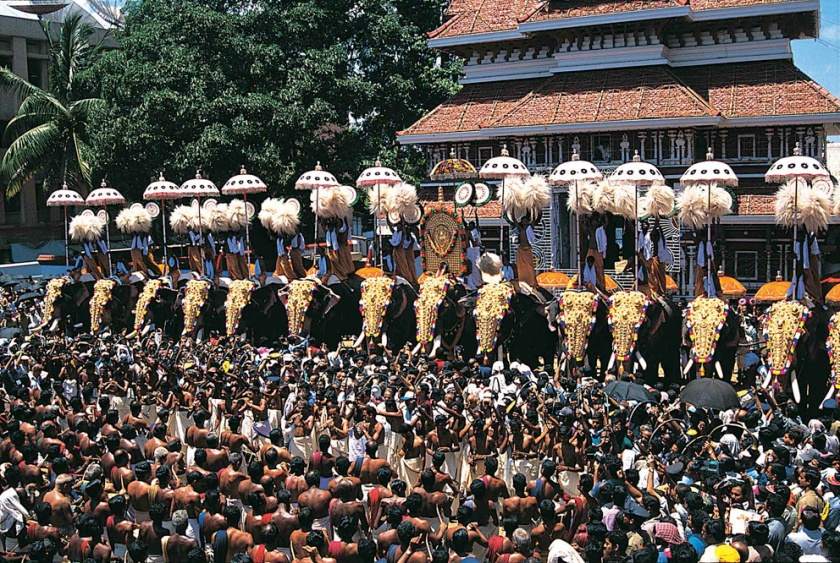 Crowds at the Thrissur Pooram Elephant Festival