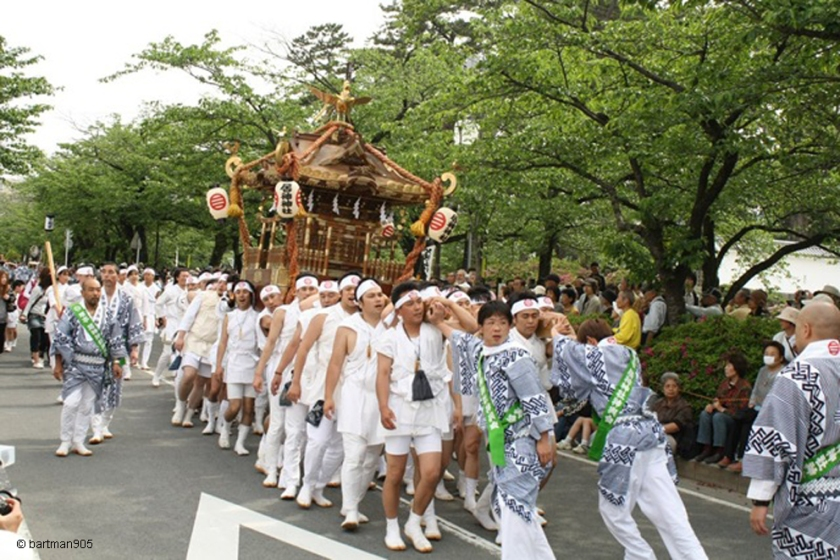 Mikoshi procession at Odawara Hojo Godai Festival
