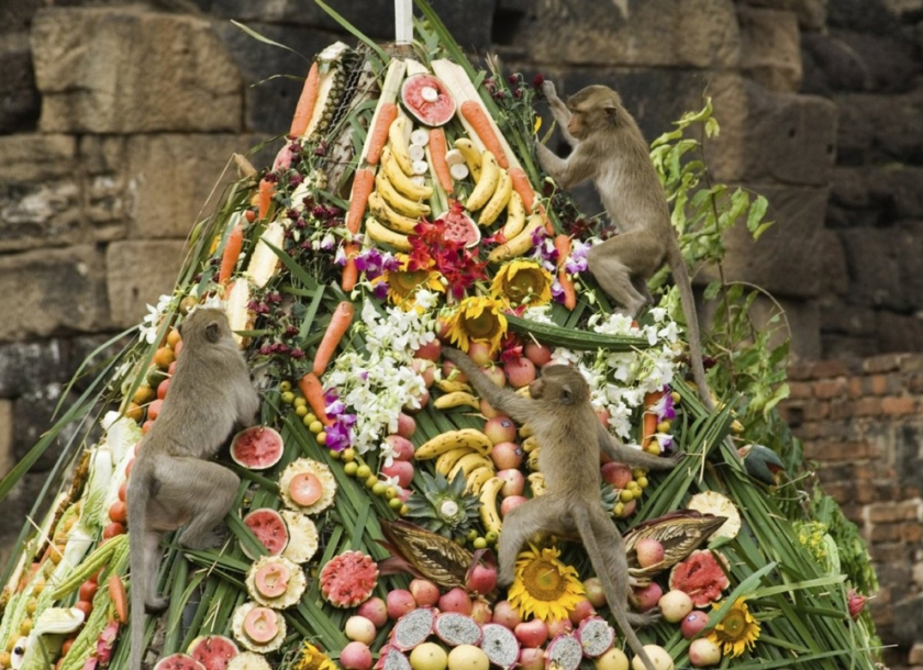 Monkeys climbing pile of food at the Lopburi Monkey Banquet Festival, Thailand
