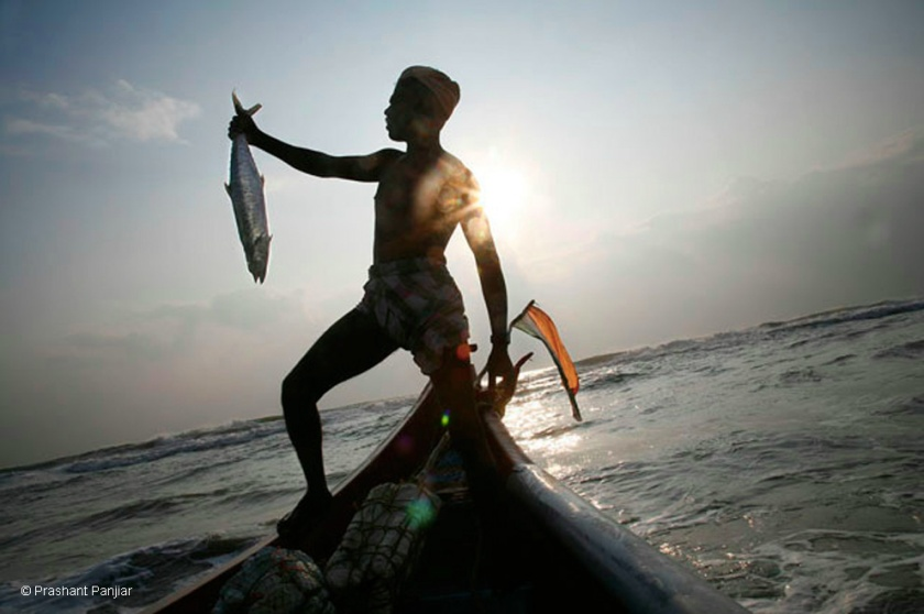 A fisherman with his catch, Veerampattinam, Pondicherry.